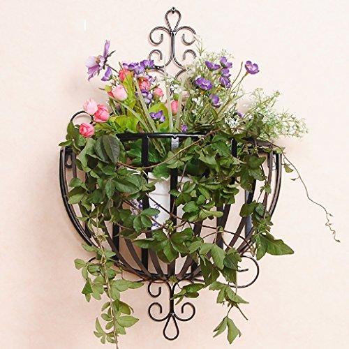 Étagère à fleurs vertes Chlorophytum suspendue à fleurs Ensemble de décoration intérieure Cadre semi-cercle d'étagère de fleurs créatives (Couleur : Noir)