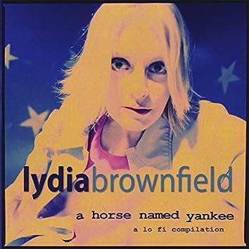 A Horse Named Yankee