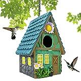Puninoto Bird Houses for Outside, Hand-Painted Birdhouses for Outdoor Hanging, Bird Feeders House for Bluebird, Hummingbird, Wren, Finch and Other Bird, Decorative Bird Nest for Garden Indoor Gift