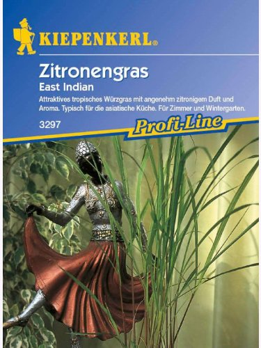 Zitronengras East Indian