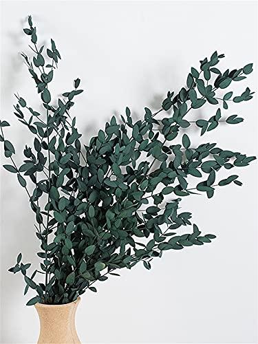 Bouquet de bouquet séché naturel Bricolage bouquet naturel fleurs séchées Eucalyptus feuille vraie branche de pin de pin de blé en pin de mariage Non soumis à des restrictions saisonnières nera pa