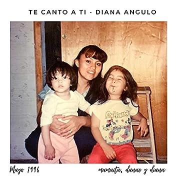 Te Canto a Ti (feat. Werito)