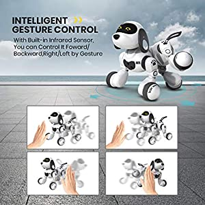 DEERC Remote Control Dog Robot Toys for Kids Programmable Smart RC Robot with Gesture Sensing,Robotic Kit with LED Eyes…
