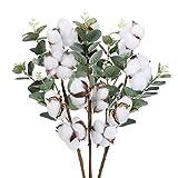 DWANCE 3 Pcs Ramo de Flores Secas Tallos de Algodón Natural con Hojas de Eucalipto Rama de Flores Artificiales para Decoración del Hogar Habitaciones Oficinas Fiestas Bodas