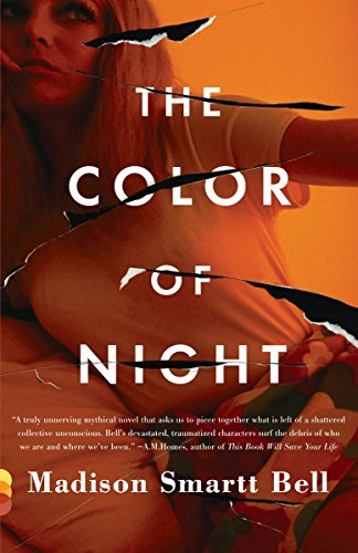 Image of The Color of Night (Vintage Contemporaries)