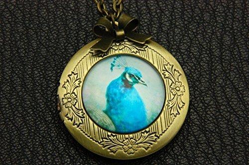 Halskette Medaillon blauer Pfau Glasschmuck Medaillon exquisiter Anhänger Weltraum-Anhänger Bronze Foto Medaillon Halskette Kupfer