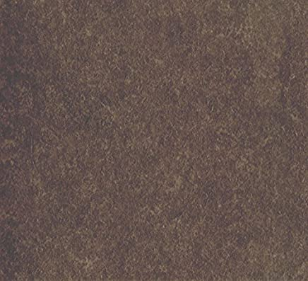 床張替 リフォーム (工事費込) | トイレ | フロアタイルからクッションフロア 張替え | シンコール E6008