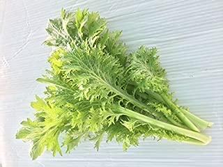 無農薬 人気サラダ用葉物野菜 10袋セット サラダほうれん草 (70g培地付き)4袋 サラダ水菜 70g 3袋 わさび菜 60g 3袋