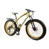 MYTNN Fatbike 26 Zoll 21 Gang Shimano Fat Tyre Mountainbike 47 cm RH Snow Bike Fat Bike (Gold-Gold)