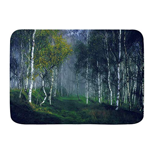 Bathroom Rug Carpet Non Slip,Misty Forest Ehereal Nature View Birch Grove Meadow Herbal Plant Fog,Microfiber Modern Bath Rugs Soft Bath Mat