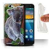 Hülle Für Huawei Ascend G7 Wilde Tiere Koala Design