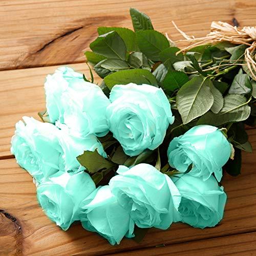 Semillas de rosas azules, 100 piezas / bolsa Semillas de rosas Dulce Fácil de plantar Planta verde perenne Bonsai Semillas de flores de rosas para jardín