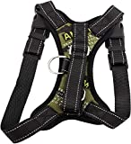 Front Range No Pull Dog Harness Review and Comparison