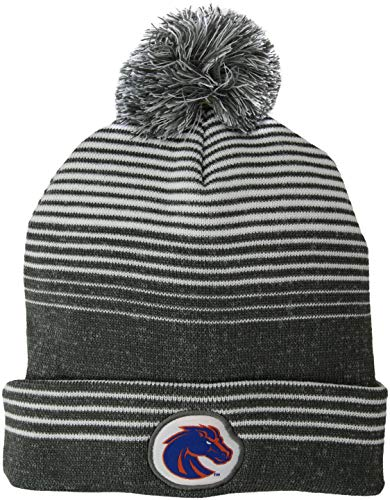 Ouray Sportswear NCAA Mens Engager Beanie