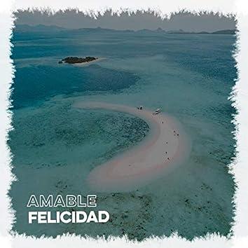 Amable Felicidad, Vol. 1