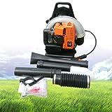 Immagine 2 btdahong leaf blower 65cc zaino