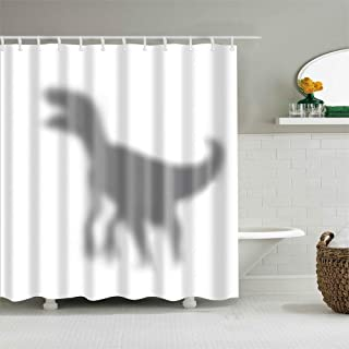 Frank Home Shower Curtain Set with Hooks Shadow of Dinosaur Jurassic Bathroom Decor Waterproof Polyester Fabric Bathroom Accessories Bath Curtain 72 x 72 inches