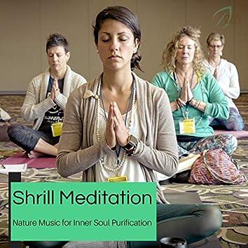 Shrill Meditation - Nature Music For Inner Soul Purification