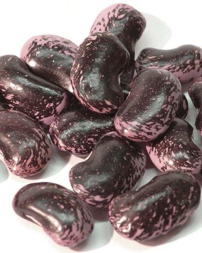 新豆!令和2年★新豆 群馬県嬬恋村産 紫花豆 1kg
