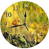 Yaoni Silencioso Wall Clock Decoración de hogar de Reloj de Redondo,Silvestre Seta Cruda Hierba Otoño Naturaleza Comestible Hermoso Crecimiento,para Hogar, Sala de Estar, el Aula