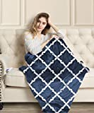 MIZZEO Electric Heated Blanket 84' x 90' Queen Size Fast Heating Blankets 100% Polyester Velvet 10 Heating Levels 1-12 Hours Auto-Off ETL Certified Machine Washable (Navy)
