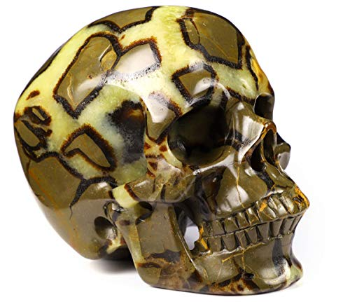 "Skullis 5.0"" Dragon Septarian Stone Super Realistic Crystal Skull, Hand Carved Gemstone Fine Art Sculpture, Reiki Healing Stone Statue."