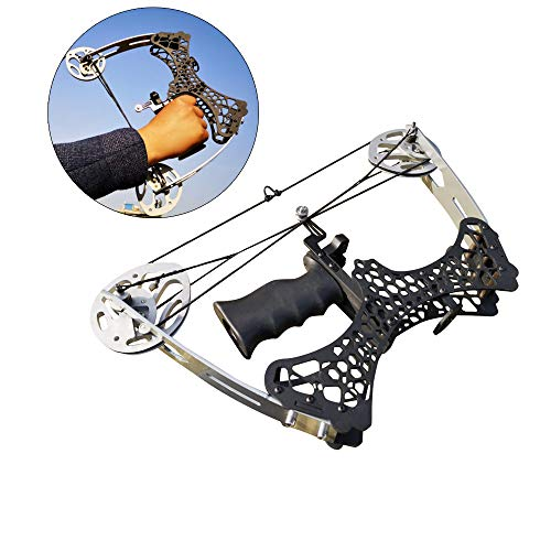 AMEYXGS Archery Compound Bow and Arrow Kits 35 Lbs Mini Compound Bow Right and Left Hand Bow for Outdoor Hunting Shooting (Type 1)