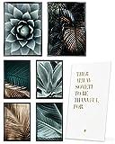 Heimlich® Premium Poster Set OHNE Bilderrahmen   Stilvolles Set mit passenden Bilder als Wohnzimmer Deko   2 x DIN A3 & 4 x DIN A4 - ca. 30x42 & 21x30   » Agaven Palme Gold «