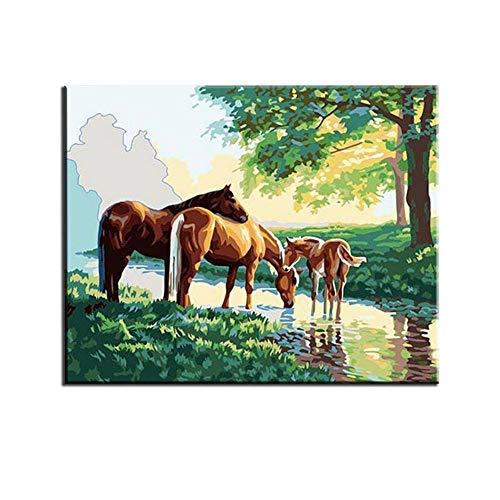 JKVDJS Rahmenlose Pferdebilder Malen Nach Zahlen Digitales Öl Auf Leinwand Home Decoration 40X50Cm Handbemalt DREI Pferde Leinwand, 40X50Cm Ohne Rahmen
