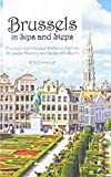 Brussels in Sips and Steps: Fourteen Self-Guided Walks to Explore Brussels  History and Belgium s Beers