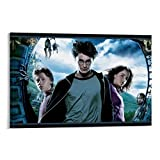 DRAGON VINES Harry Potter Hermine Poster und Drucke auf