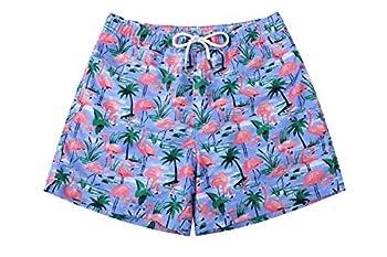 WUAMBO Mens Beachwear Swim Trunks Quick Dry Swim Shorts #5 Small  Waist 28 -31