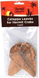 Fluker's Catappa Leaves for Hermit Crabs (5 Leaves Per Pack)