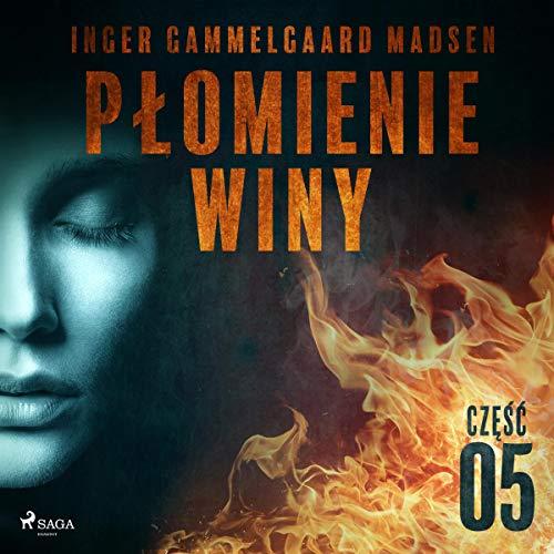 Płomienie winy - część 5 audiobook cover art