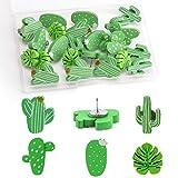 TOYMIS 30Pcs Decorative Cactus Thumb Tacks Push Pins for Photo Wall, Map, Cord Board, Bulletin Board, Home Office Decoration