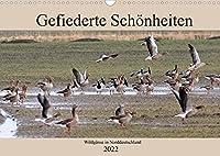Gefiederte Schoenheiten - Wildgaense in Norddeutschland (Wandkalender 2022 DIN A3 quer): In beeindruckenden Fotos zeigt der Fotograf Rolf Poetsch, die verschiedenen Arten von Wildgaensen in Norddeutschland. (Monatskalender, 14 Seiten )