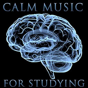 Peaceful Studying Music