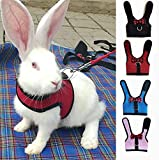 sonicbee Multipurpose Rabbits Hamster Vest Harness with Leas Bunny Mesh Chest Strap Harnesses Ferret Guinea Pig Small Animals Pet Accessories (S, Pink)