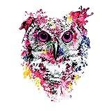 Pintura Por Números Pintura Por Números Para Colorear Digital, Afición De Bricolaje, Pintura Por Números Color Búho-40x50