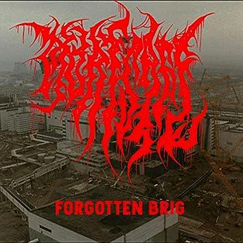 Forgotten Brig