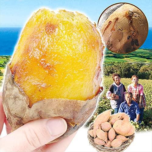 国華園 さつまいも 種子島産 お買得 安納芋ミックス 5�s ご家庭用 食品
