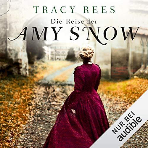 Die Reise der Amy Snow cover art