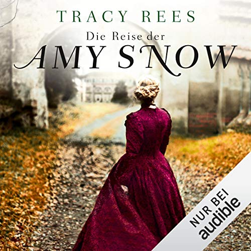 Die Reise der Amy Snow  By  cover art