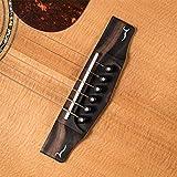 Immagine 1 cort gold o8 chitarra acustica