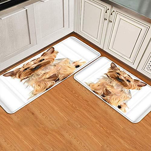 Juego de alfombrillas de cocina de 2 piezas,Perro Schnauzer disfrazado de animal lindo ca, Alfombra antideslizante con respaldo para alfombra de cocina, lavable y duradera, alfombra de corredor