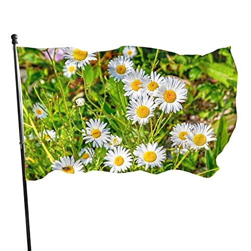 GOSMAO Bandera de jardín Goat Island Wild Daisies Maine Color Vivo y Resistente a la decoloración UV Banner de Patio con Doble Costura Bandera de Temporada Banderas de Pared de 150X90cm