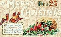2個 メリークリスマス 12月25日 鳥の装飾 8 X 12インチの壁 記念の鉄の絵画、家の塀、屋外の装飾 バーペンダント 金属の窓のサイン