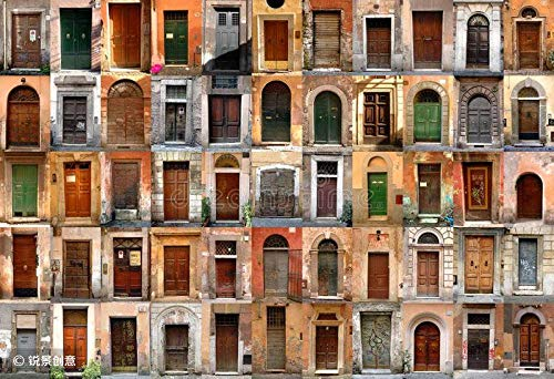 HCYEFG 1000 Pieces Photo Jigsaw Puzzle Doors - Rome, Italy DIY Toys for Adults Decoration Collectiable