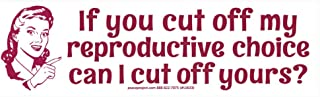 """If You Cut Off My Reproductive Choice Can I Cut Off Yours? - Pro-Choice Magnetic Bumper Sticker / Decal Magnet (9.25"""" X 2.5"""")"""