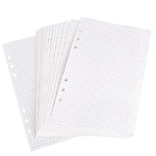 160 Blätter A5 6-Ring Refill Papier für Tagebuch Notizbuch Ringbuch Reisetagebuch 6 Löcher Binder Planner Notizpapier Ersatzblätter Büro Schule (320-Gitter)